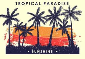 Palmetto tropicale vettore