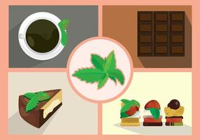 Stevia Leaf Sugar vettore