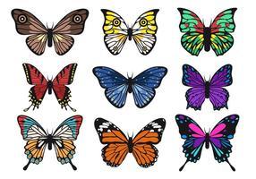 Belle collezioni di farfalle vettoriali