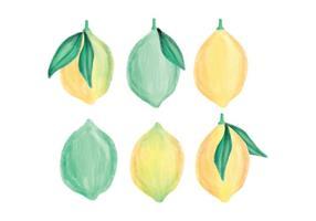 Collezione di limoni disegnati a mano di vettore