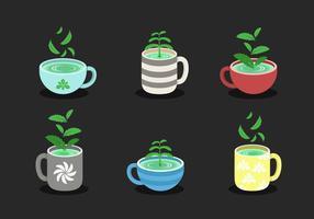 stevia con raccolta vettoriale tazza