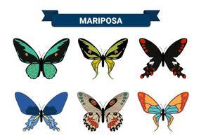 Collezioni di farfalle colorate vettoriale