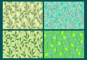 Stevia, Sweetleaf Plant Background o Seamless Patterns vettore