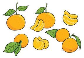 Clementine icone vettoriali