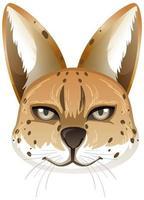 animale serval isolato su sfondo bianco vettore
