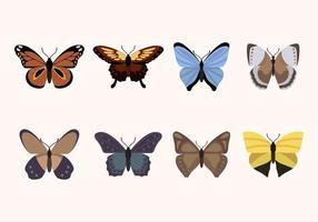 Vettori di farfalle piatte