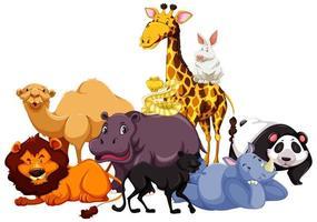 gruppo di animali selvatici vettore