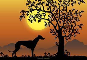 Scena di paesaggio con silhouette di razza Whippet