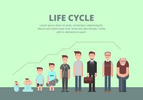 Illustrazione del ciclo di vita vettore