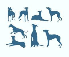 Sagome di cani levrieri vettore
