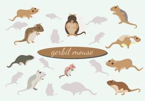 Pacchetto di vettore del mouse Gerbil