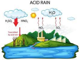 diagramma che mostra il percorso della pioggia acida su sfondo bianco