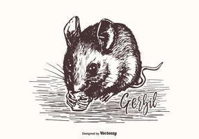Illustrazione disegnata a mano di vettore del Gerbil