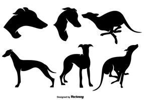 Siluette stilizzate delle siluette del cane di Whippet