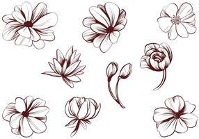 Vettori di fiori vintage dettagliate
