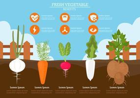 Benefici della verdura fresca