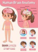 poster informativo del diagramma del cervello umano vettore