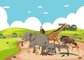 gruppo di animali selvatici africani nella scena dello zoo vettore