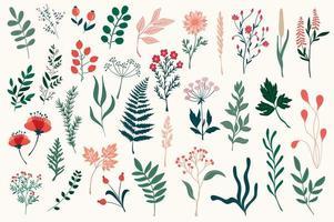 fascio di elementi decorativi floreali colorati vettore