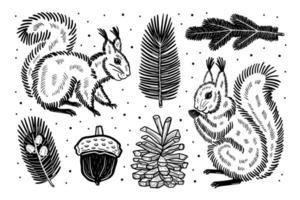 scoiattolo disegnato a mano e elementi della foresta vettore