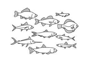 Vettore di icona di linea di pesce gratis