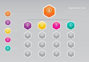 Organigramma, struttura aziendale vettore