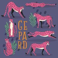 collezione di simpatici ghepardi rosa disegnati a mano vettore