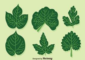 vettore di foglie di edera