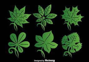 Vettore verde della raccolta della foglia dell'edera