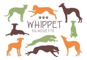 Vettori di sagoma di cane Whippet