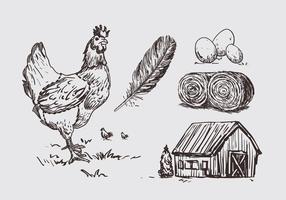 Litografia di illustrazione di pollo vettore