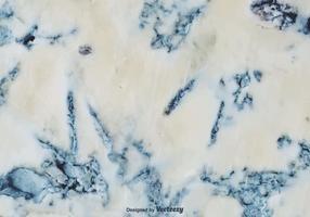 Fondo blu di struttura di vettore del formaggio della muffa