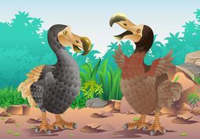 Uccelli Dodo maschio e femmina vettore