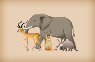 gruppo di animali selvatici sullo sfondo vettore