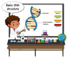 giovane scienziato che spiega la struttura di base del dna davanti a una tavola con elementi di laboratorio vettore