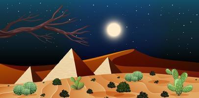 paesaggio desertico selvaggio alla scena notturna vettore