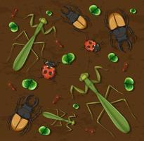 set di diversi insetti su sfondo carta da parati in legno vettore