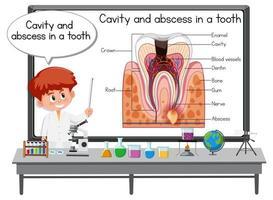 giovane scienziato che spiega la cavità e l'ascesso in un dente in laboratorio vettore