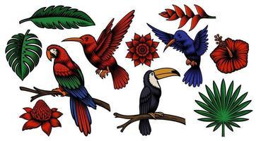 set di coloratissimi uccelli tropicali e fiori esotici vettore