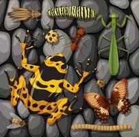 set di diversi insetti isolati sulla trama di pietre vettore