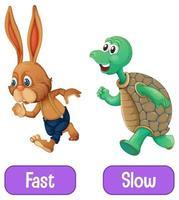 aggettivi opposti parole con veloce e lento vettore