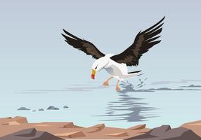 Albatro volante in mare vettoriale
