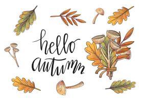 Foglie di autunno dell'acquerello e vettori di ramo