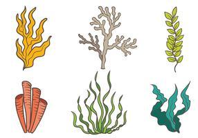 Icone di vettore di mare Weed