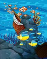 molti pesci esotici personaggio dei cartoni animati sullo sfondo sott'acqua vettore