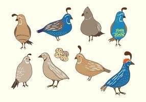 Vettore di uccelli di quaglia