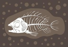 Fishbone Fossil Vector