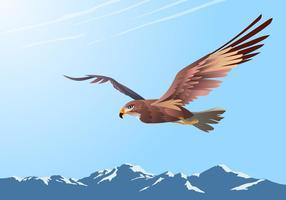 Poiana che vola sopra il vettore delle montagne
