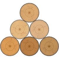 legname di legno a piramide isolato su sfondo bianco vettore
