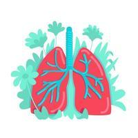 sistema polmonare anatomico vettore